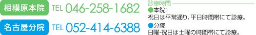 営業時間:[平日]AM8:00~12:00/PM15:30~20:00 [土曜]AM8:00~12:00/PM14:00~17:00 祝日は平常通り、平日時間帯にて診療。 年中無休 ホームページを見たとお伝えください 電話番号:046-258-1682